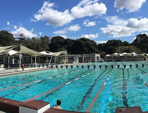 News from Sydney Swimmers