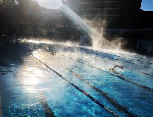 Different Strokes Swimming Newsletter July 17th